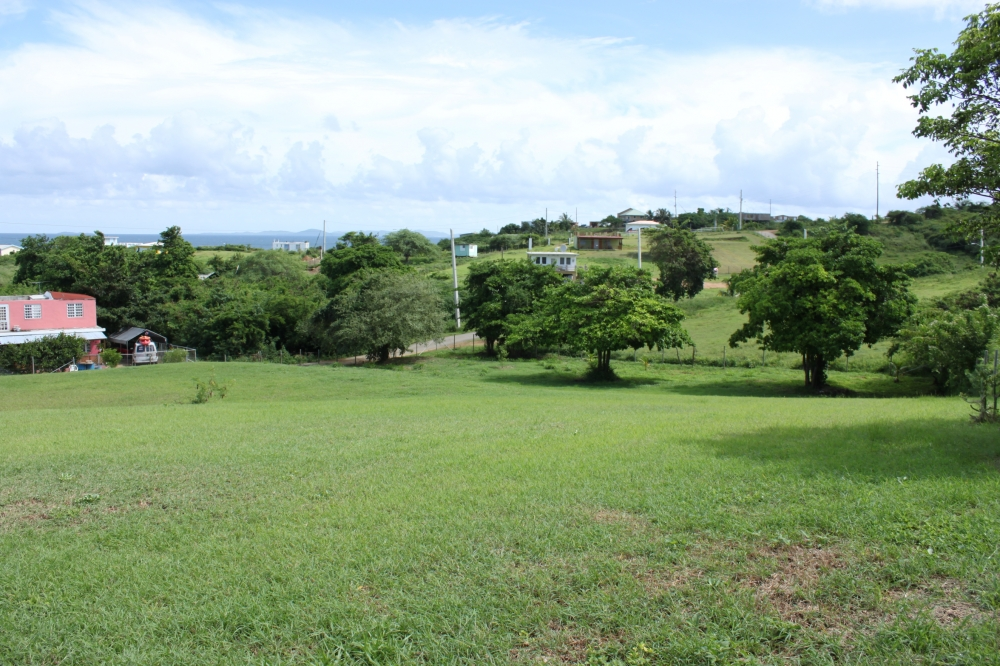Titled View Lot