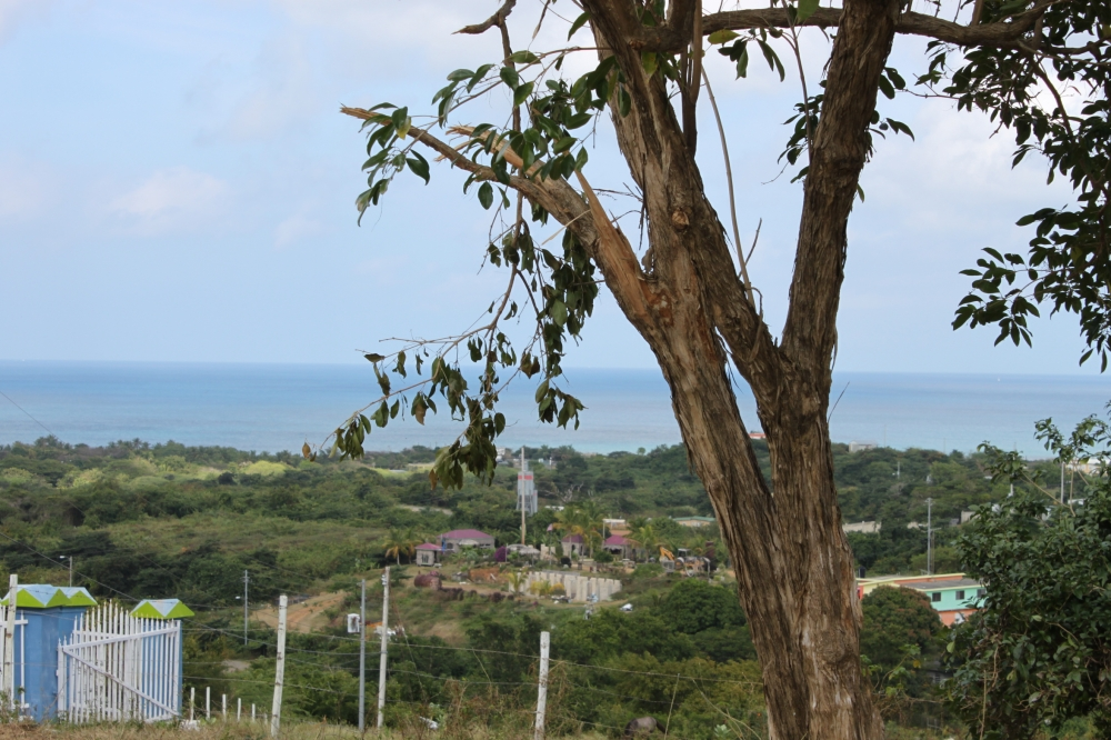 Villa Borinquen Big View Lot