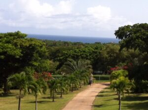 Vieques Real Estate for Sale
