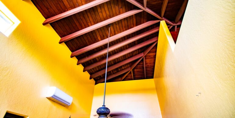 Martineau Master Ceiling a