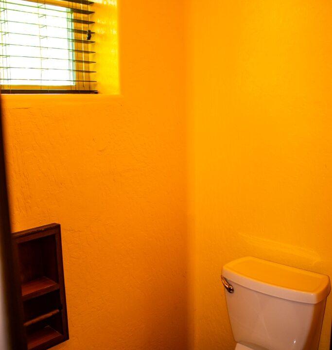 Master Toilet a