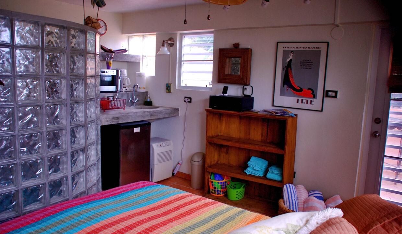 Studio apartment kitchenette and shower